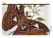 Lepidoptera Carry-all Pouch by Edward Donovan
