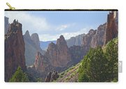 Db5956-leslie Gulch Carry-all Pouch