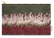 Lesser Flamingo Mass Courtship Carry-all Pouch