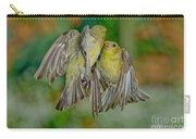 Lesser Goldfinch Females Fighting Carry-all Pouch