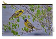 Lesser Masked Weaver Carry-all Pouch