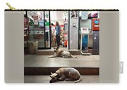 Let Sleeping Dogs Lie Where They May Carry-all Pouch