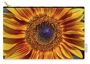 Let The Sun Shine In Carry-all Pouch