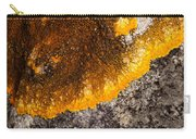 Lichen It Carry-all Pouch