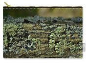Lichen Macro I Carry-all Pouch