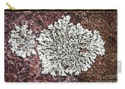 Lichen On Rock Carry-all Pouch
