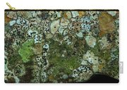 Lichen On Rock In Suck Creek Carry-all Pouch