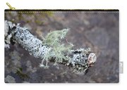 Lichens 2013 Carry-all Pouch