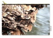 Lichens Abstract 2013 Carry-all Pouch