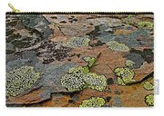 Lichens Along Trail To Plain Of Six Glaciers In Banff National Park-alberta-canada Carry-all Pouch