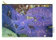 Life Among The Stars Carry-all Pouch