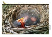 Life In The Nest Carry-all Pouch by Christina Rollo