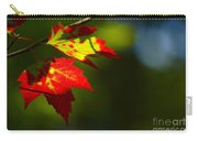 Light Gives Us All A Chance Carry-all Pouch by Aimelle