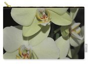 Light Green Phalaenopsis 1 Of  3 Carry-all Pouch