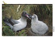 Light-mantled Albatross Feeding Chick Carry-all Pouch