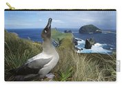 Light-mantled Albatross Sky-pointing Carry-all Pouch