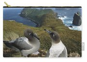 Light-mantled Albatrosses Courting Carry-all Pouch