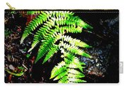 Light Play On Fern Carry-all Pouch