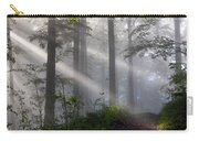 Lightbeams Carry-all Pouch