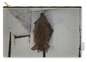 Lighthouse Bat Carry-all Pouch