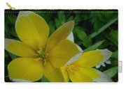 Lilium Of Gold Carry-all Pouch