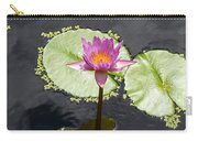 Lilly Lake Carry-all Pouch