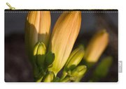 Lily Blossoms At Sunset Carry-all Pouch