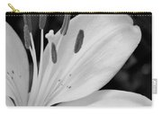 Lily Bw Carry-all Pouch