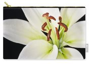 Lily In Winter Carry-all Pouch