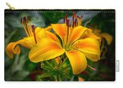 Lily Sunshine Carry-all Pouch