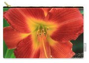 Daylily 5  Carry-all Pouch