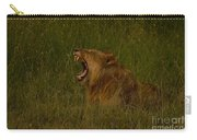 Lion   #1050 Carry-all Pouch