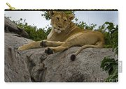 Lion   #1646 Carry-all Pouch