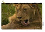 Lion   #9976 Carry-all Pouch
