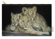 Three Lion Cubs Carry-all Pouch