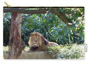 Lion King At Washington Zoo Carry-all Pouch