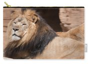 Lion Portrait Of The King Of Beasts Carry-all Pouch