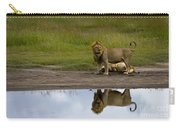 Lions   #1504 Carry-all Pouch