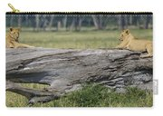 Lions Carry-all Pouch
