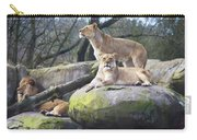 Lions Posing Carry-all Pouch
