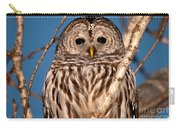 Lit Up Owl Carry-all Pouch