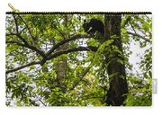 Little Bear Cub In Tree Cades Cove 2 Carry-all Pouch