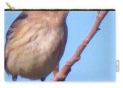 Little Bird Carry-all Pouch