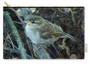 Little Bird Waiting Carry-all Pouch