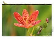 Little Blackberry Lilly Carry-all Pouch