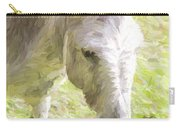 Little Burro Carry-all Pouch