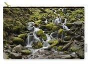 Little Cascades Carry-all Pouch