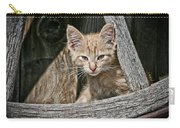 Little Charlie - Kitten By Wagon Wheel - Casper Wyoming Carry-all Pouch