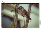 Little Costa's Hummingbird Carry-all Pouch