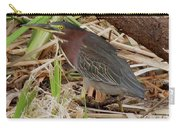 Little Green Heron Carry-all Pouch